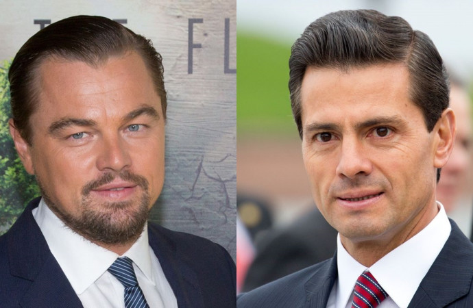Leonardo DiCaprio Issued a Plea to Save Endangered Porpoise, and Mexico's President Took Notice