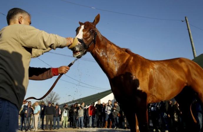 Kentucky Derby: Favorite Justify 'is in American Pharoah's class'