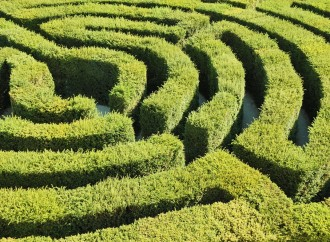 Adrian Fisher's magic of maze
