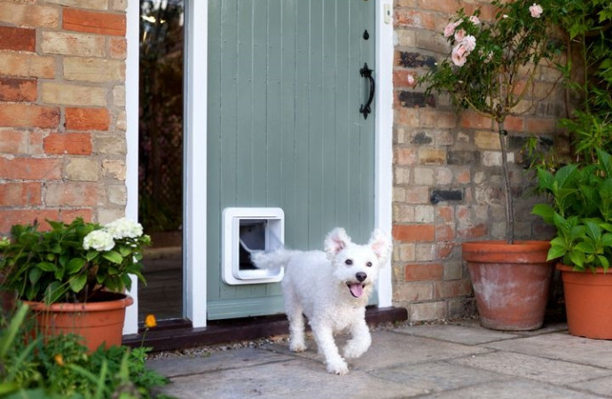Obsess over your dog even more with this smart pet door