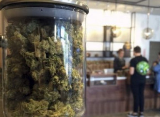 DEA loosens reins on medical marijuana research, but activists want more