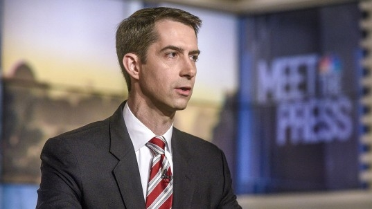Sen. Tom Cotton: 'I was not offended' by Trump's 'cursing' at meeting